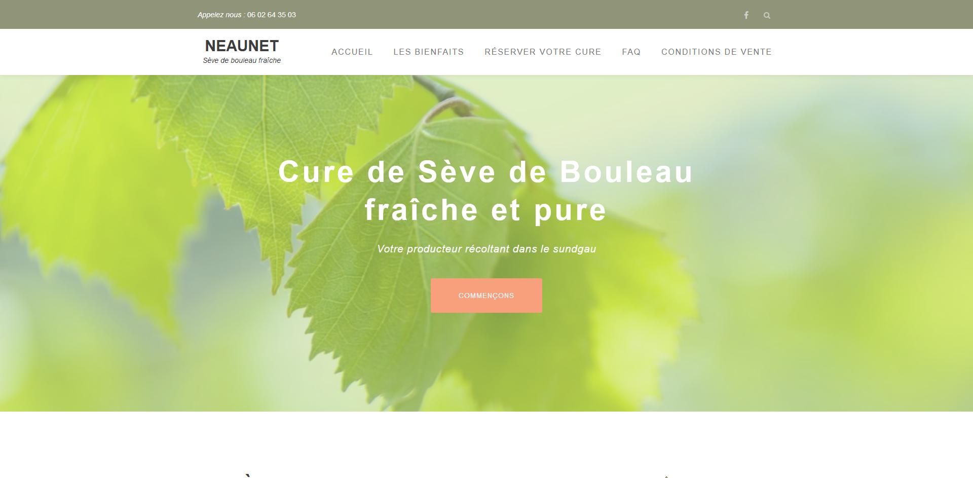Webdesign - Sepixel - neaunet
